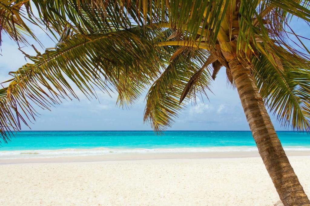 Ein Strand als malerischer Hintergrund für ein Fotoshooting.